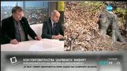Георги Костов: Сечта не е единствената причина за наводненията