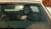 Les Cowboys Fringants - Les Etoiles Filantes (Music Video) (Оfficial video)