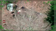 Croatia: Police rescue migrants from forest minefield after deadly explosion