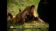 Смъртоносен боец - Келт срещу Персиец Hd