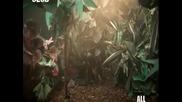Еmiliana Torrini - Jungle Drum(високо качество)