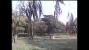 Sanjay Dutt Anita Raj