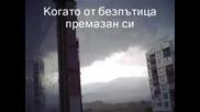 Дамян Дамянов - Стихотворение...