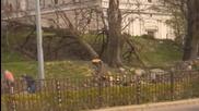 Сеч в центъра на Пловдив