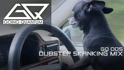 • Dubstep • Skaning Mix January 2011