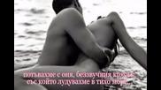 Страстно Изгаряне - Илко Карайчев - zefpet 16 +