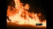 neshouto na net Ogromen bengalski ogan