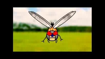 Kung - Fu Mosquito