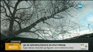 """""""Пълен абсурд"""": Изоставена кола престоя над месец на оживено кръстовище"""