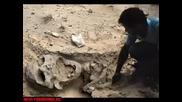 Открити гигански кости на хора