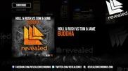 Holl & Rush vs Tom & Jame - Buddha ( Original Mix )