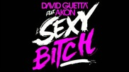 David Guetta ft. Akon - Sexy Bitch ( Metal Remix )