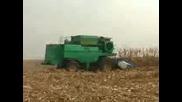 Жътва на царевица с Дон - 1500 Б и Змай 142