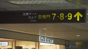 Taiwan: Taipei airport offers 'fake' travel experience while flights grounded