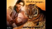 Shahrukh Khan Rocks!