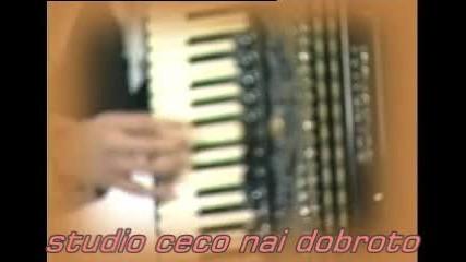 Sinan Sakic 06 Jujni Vetar Koncert