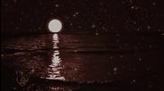 Nocturnal Romance