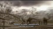 Bbc Планетата на динозаврите 5 епизод - 2/2
