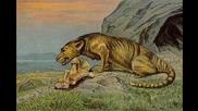 Топ 10 Праисторически хищни бозайници