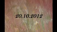 Freerunnig събиране в Пловдив 20.10.2012