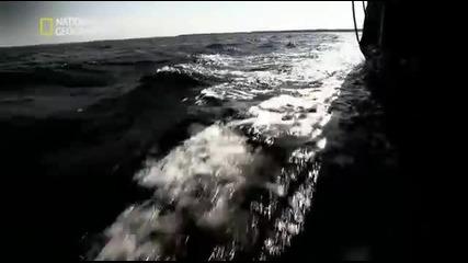 Древните Досиета Х - Шифърът На Инките - 2012 (bg Audio)