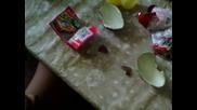 Kinder Surprise / изненада - яйца с играчки