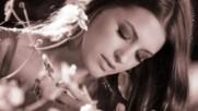 Saban Saulic - Sve sam s tobom izgubio