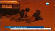 Заложническа криза в Буркина Фасо приключи с 20 загинали