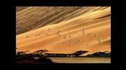 Горячее Дыхание Песков - Дидюля Arabika