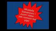 Mustafa Sabanovic Juzni Vetar - Jek Romoro But Pijel