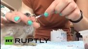 UK: Meet Beaky, the kite chick who received reconstructive surgery