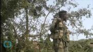 Slow Start Revives Doubts About Congo Campaign Against Rwandan Rebels