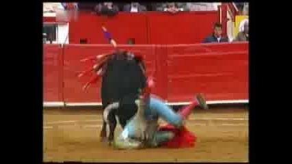 Жестокостта На Биковете
