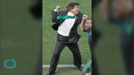 Mexico Coach Miguel Herrera Fired After Fight With Journalist