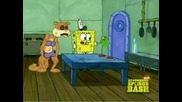 Sponge bob season 7 - Someones in the kitchen with sandy