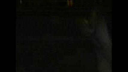 Ескимоска Целувка
