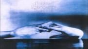Clotted Symmetric Sexual Organ - Nagro Lauxes Viii 1996 Full Album Hq Experimental Grindcore