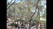 Младежко Световно По Ориентиране Австралия 2007