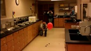 Балон С Хелий И Огън