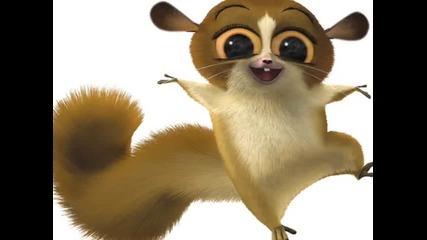 .. Madagascar xd ..