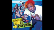 Elephant Man feat. Chris Brown - Feel The Steam
