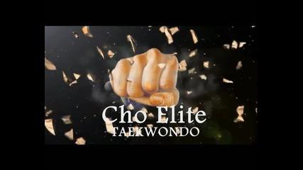 Cho Elite Taekwondo - Разлог