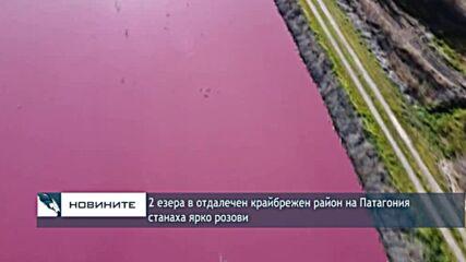 2 езера в отдалечен крайбрежен район на Патагония станаха ярко розови