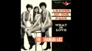 Shangri - Las - I Can Never Go Home Anymore