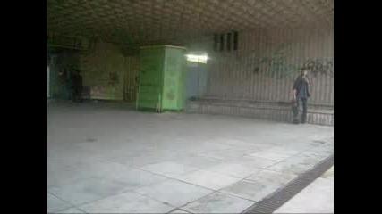 Monkey Skateboarding :)