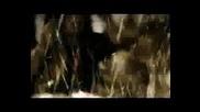 Alesana Ambrosia Video