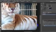 Как вырезать объект в Фотошопе. Как сохранить выделение. Урок 2