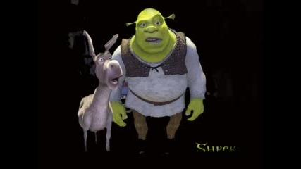 Za Vsi4ki Fenove Na Shrek