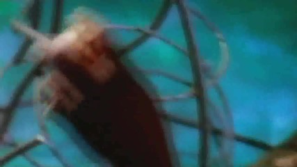 Ретро - Cappella - U And Me
