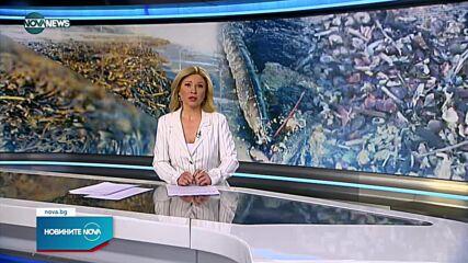 Новините на NOVA NEWS (27.10.2021 - 15:00)